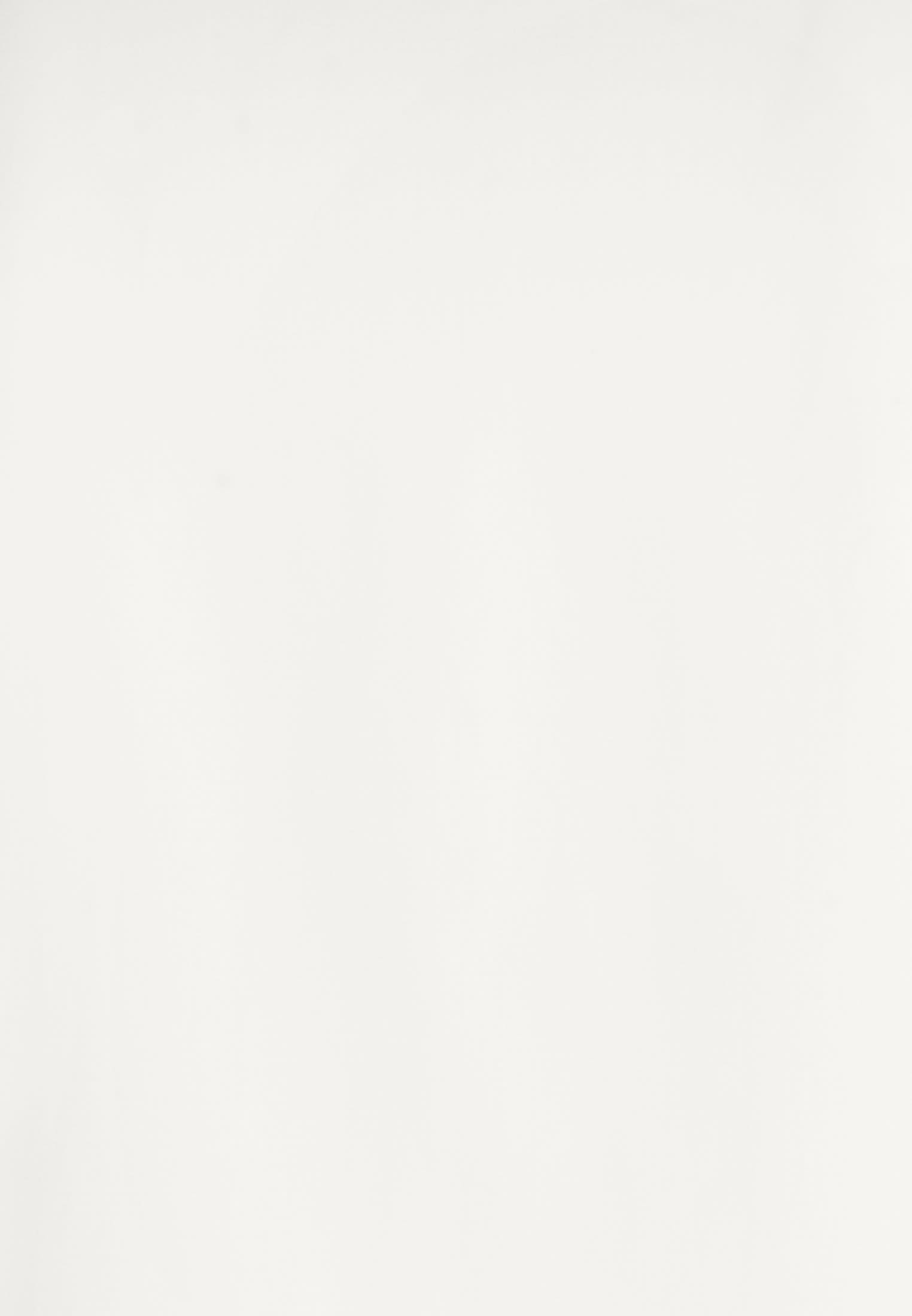 Satin Business Hemd in Slim Fit mit Kentkragen in Ecru |  Jacques Britt Onlineshop