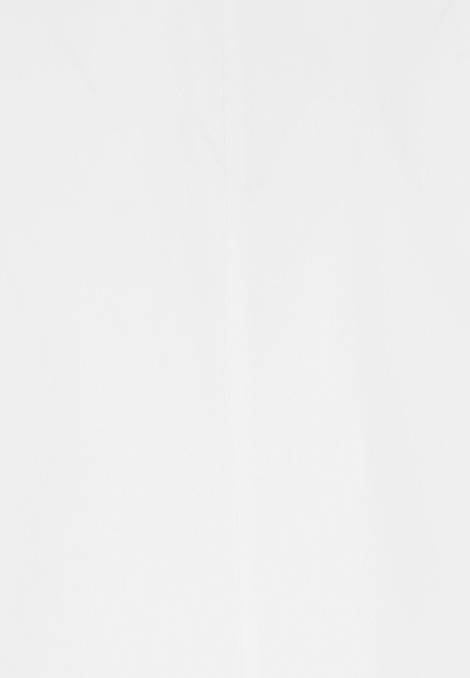 Sleeveless Poplin Shirt Blouse made of 100% Cotton in White |  Seidensticker Onlineshop