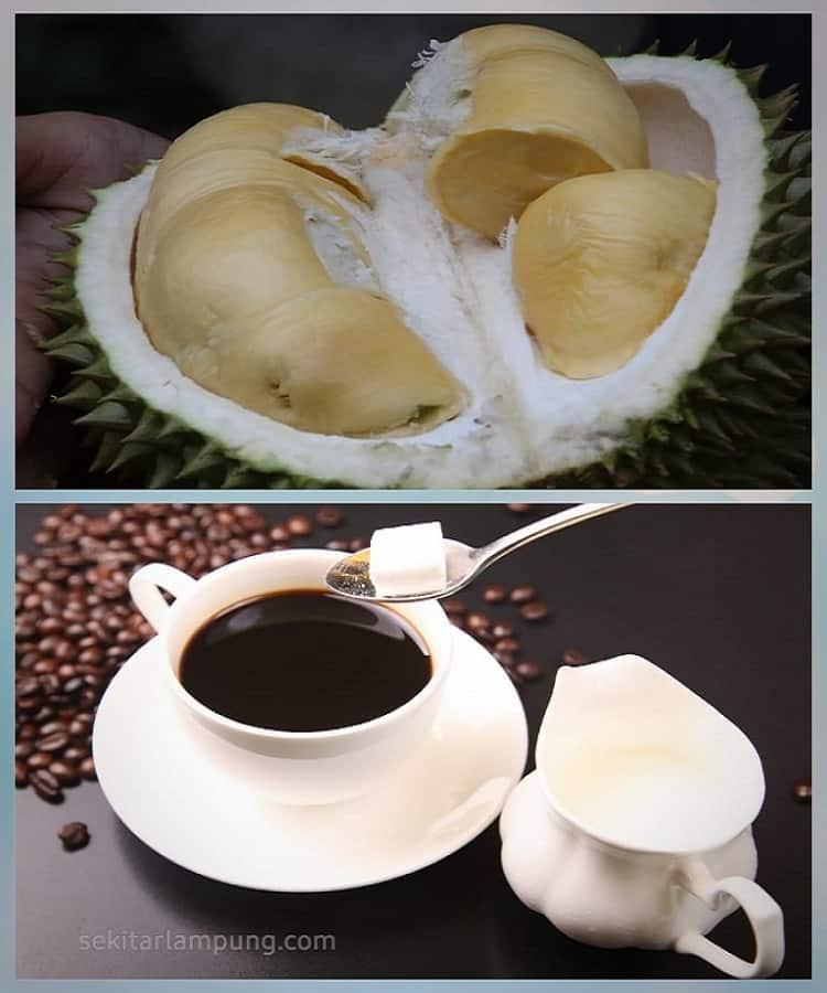 Durian Kopi Luwak Lampung Barat