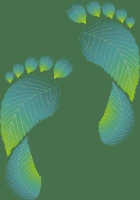 Karbonlábnyom | Karbonsemleges Iránytű