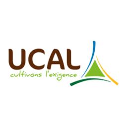 UCAL Logo