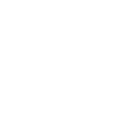 IDEJA X Social causes: gold