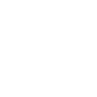 IdejaX 2021 Financial and insurance services: silver