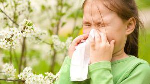 Le allergie sono in continuo aumento nei bambini, negli anziani, in chiunque. Fiori di Bach e Fiori Australiani sono un rimedio naturale per affrontarle meglio.