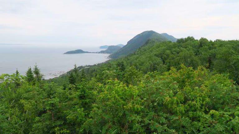Le Pic Champlain: randonnée dans le parc national du BIC.
