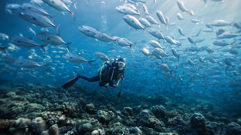 Xpérience sous-marine