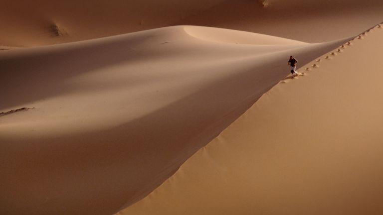Survivre dans le désert