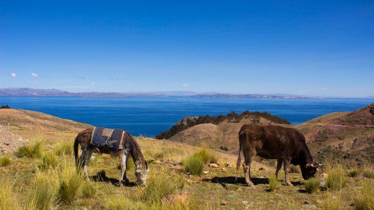 Santiago de Okala et le Lac Titicaca
