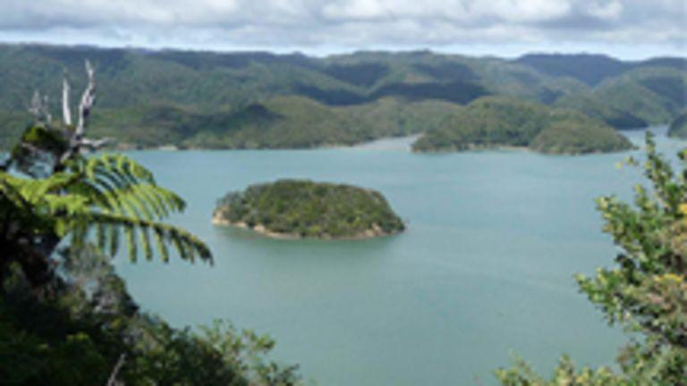 La Nouvelle-Zlande : le pays de Jade