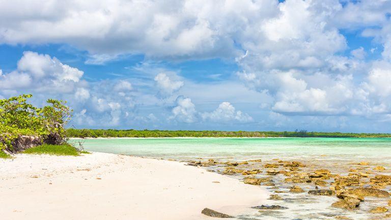 Cayo Coco est en voie de devenir l'une des principales régions touristiques de Cuba. Les plages de sable blanc et les eaux cristallines allant du bleu au turquoise constituent le principal attrait de cette île située sur la côte atlantique du pays. Entre la terre ferme et l'archipel Jardines del Rey, un pedraplén y mène – cette digue supportant une route spectaculaire de 17 km de long traverse la mer puis des marais. On peut voir une abondante faune marine tout au long du trajet et avoir le sentiment de faire un pèlerinage vers un paradis naturel.  Cayo Coco se définit comme une enclave touristique en pleine expansion. Même si les Cubains peuvent désormais se rendre sur cette île, la majorité de ceux que vous rencontrerez ici sont des employés des hôtels et des restaurants. Avant le développement du tourisme au début des années 1990, Cayo Coco se présentait comme une île déserte, bien que des légendes racontent que des pirates fréquentaient cette région. Le développement touristique inquiète cependant les environnementalistes. La construction de nombreux complexes hôteliers aura un impact certain sur cette zone pratiquement vierge à l'équilibre écologique fragile.
