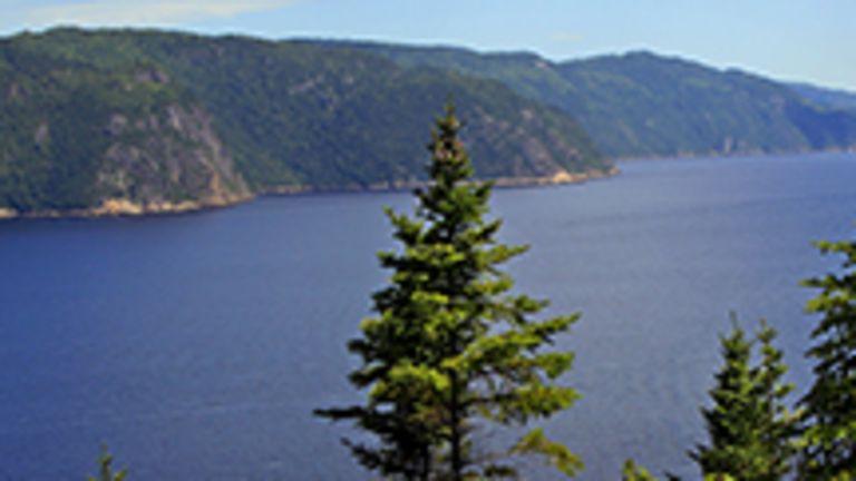 Par ses paysages grandioses, le Saguenay–Lac-Saint-Jean est le pays du gigantisme. La rivière Saguenay prend sa source dans le lac Saint-Jean, une véritable mer intérieure de plus de 35km de diamètre. Ce formidable plan d'eau et cette imposante rivière constituent en quelque sorte le pivot d'une superbe région touristique. Gagnant rapidement le fleuve Saint-Laurent, la rivière Saguenay traverse un paysage très accidenté où se dressent falaises et montagnes: le fjord du Saguenay, qui s'étend sur environ 100km de Saint-Fulgence à Tadoussac et qui est l'un des plus longs fjords du monde. En croisière ou depuis les rives, on peut y admirer un défilé de splendides panoramas à la beauté sauvage.  Le lac Saint-Jean impressionne par sa superficie et la couleur de ses eaux. Les jolies plaines aux abords du lac sont très propices à l'agriculture et attirèrent les premiers colons au XIXe siècle. Le bleuet, en grande quantité au Lac-Saint-Jean, fait la renommée de cette région à un point tel que, partout au Québec, on utilise son appellation pour surnommer affectueusement les gens de ce pays. Tout comme ceux de la région du Saguenay, les habitants du Lac-Saint-Jean sont reconnus pour être accueillants et fort colorés.
