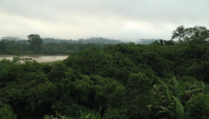 Tout inclus sur la route en Équateur
