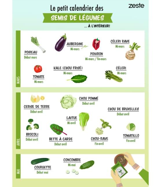 Le petit calendrier des semis de légumes