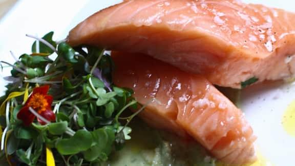 saumon poché à l'huile d'olive, crème d'avocat à l'aneth