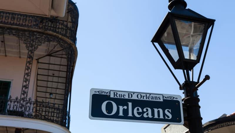 Des taureaux en Nouvelle-Orléans