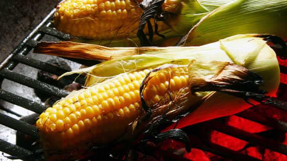 maïs grillé dans ses feuilles