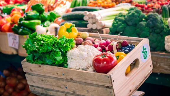 Un panier rempli de produits alimentaires locaux à portée de main!
