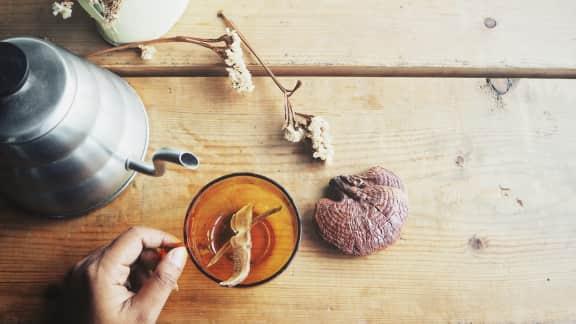 Un café aux champignons au déjeuner?