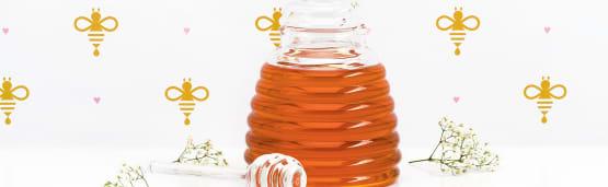 Le miel et ses secrets