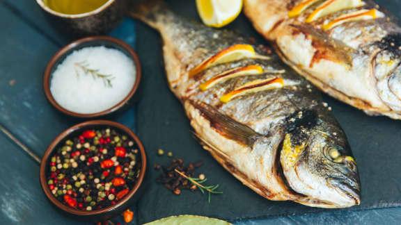 Pêche : cuisiner les poissons du Québec!