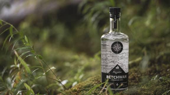 Un nouveau Gin inspiré par les saveurs de la Côte-Nord