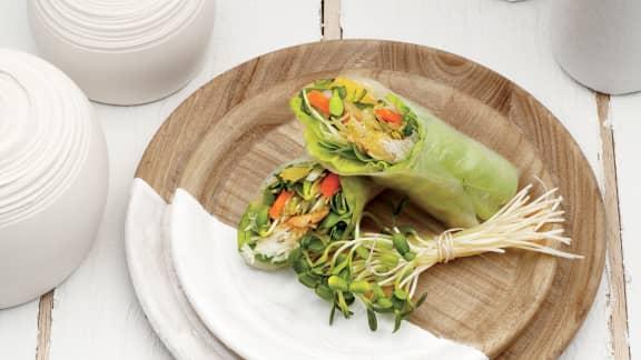 TOP : De savoureuses recettes de rouleaux de printemps à cuisiner
