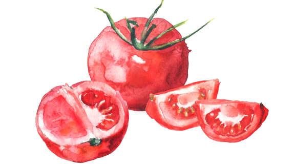La tomate à toutes les sauces