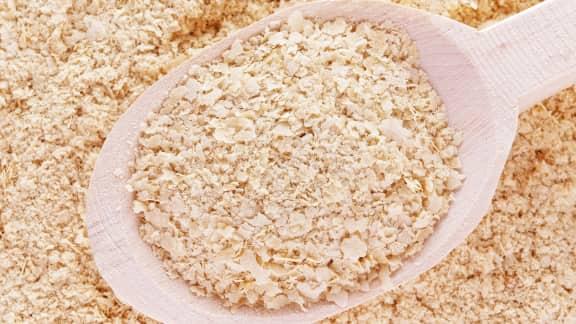 Qu'est-ce que la levure nutritionnelle et la levure de boulangerie?
