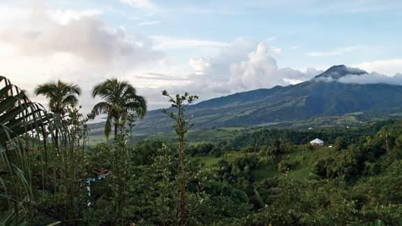 Magie en Martinique : contempler la beauté à son état naturel