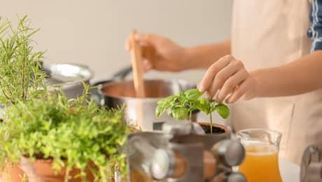 10 façons de cuisiner nos fines herbes du jardin!