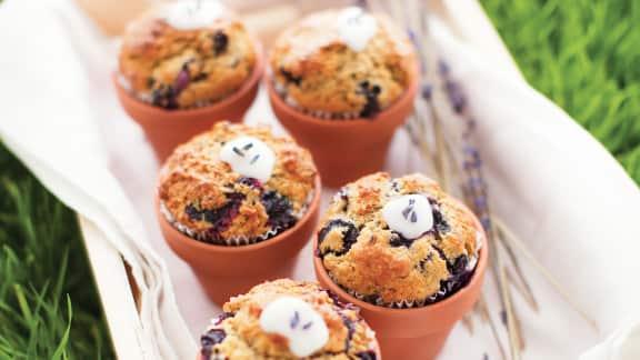 Muffins aux bleuets et à la lavande