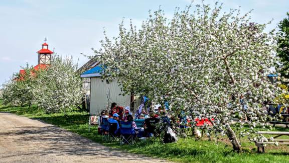 Festival des pommiers en fleurs