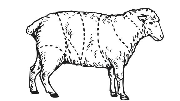 Découpe de l'agneau