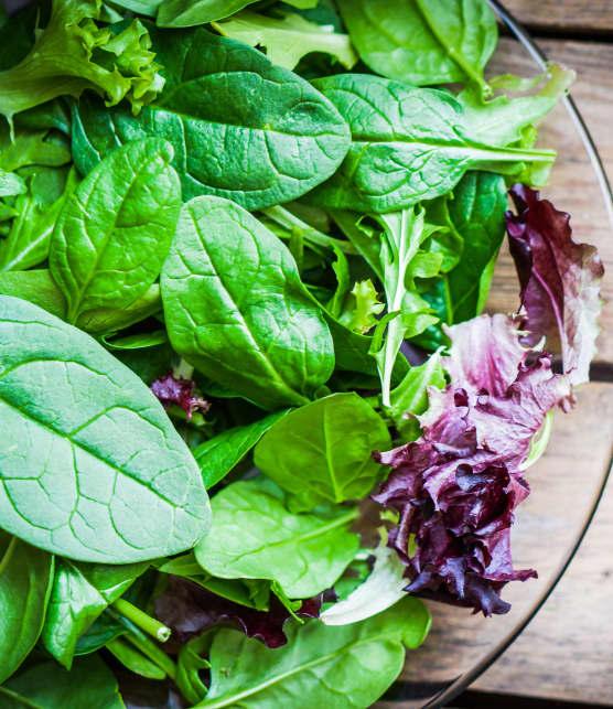 5 astuces pour garder votre laitue fraîche plus longtemps