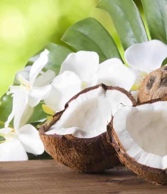 TOP : 10 succulents desserts à la noix de coco