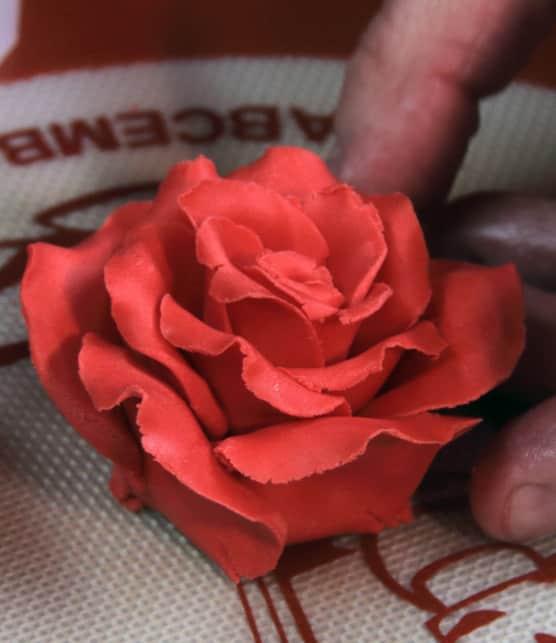 Fabriquez des fleurs comestibles pour décorer vos gâteaux avec notre expert Pascal Poulin