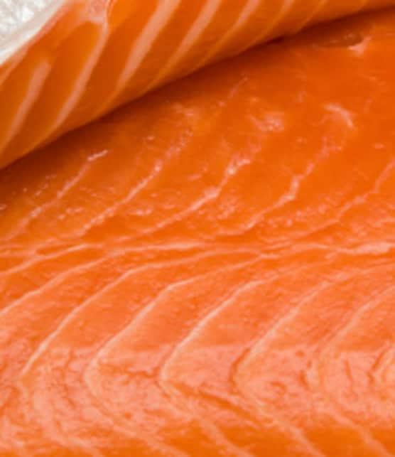 poisson gros sel