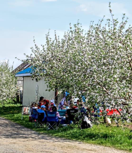 Événements gourmands : Quoi faire en mai