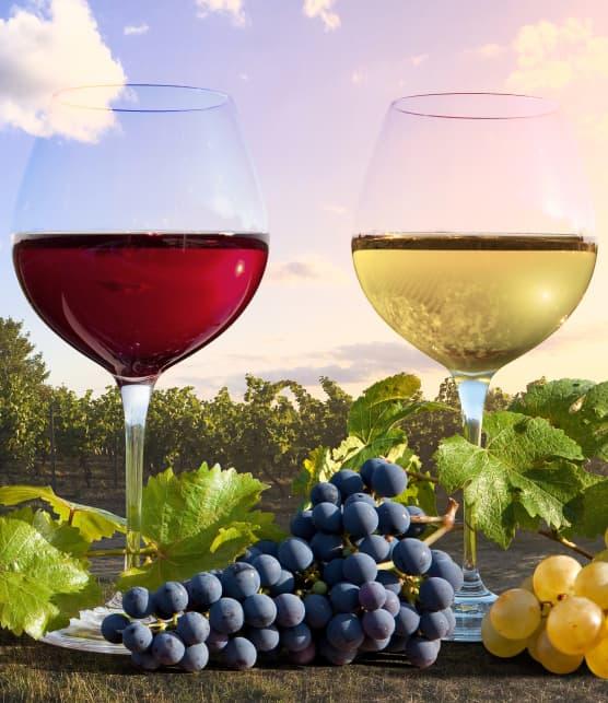 10 bons vins d'épicerie (pour faire changement de la SAQ!)