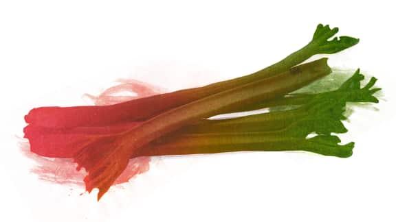 La rhubarbe, la saveur du printemps