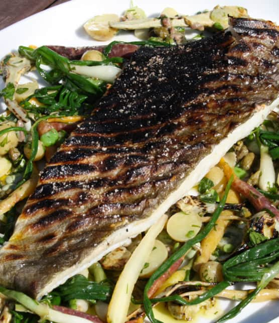 poisson blanc grillé sur salade d'été
