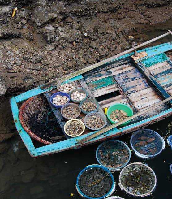 Vietnam: le pays aux marchés flottants