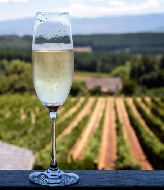 Visite au coeur du champagne!