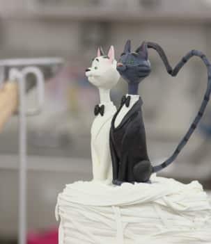 Féroce dragon et mariage félin