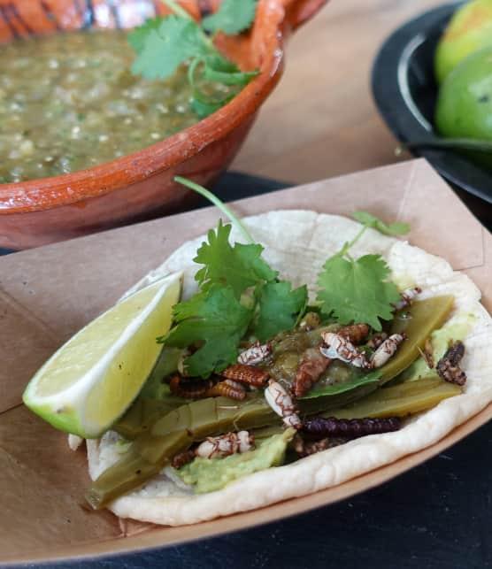 Tacos de criquets et salsa verde maison