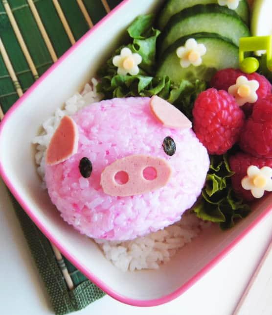 Onigiri cochon mignon au porc et à la framboise