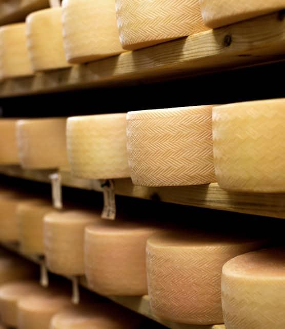 L'amoureuse des fromages