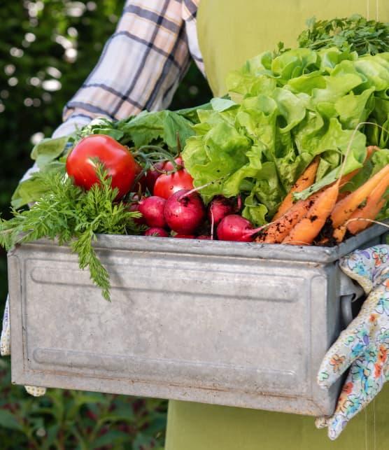 10 fermes du Québec où acheter des aliments locaux