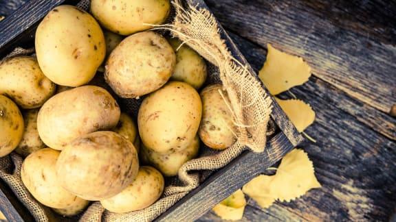 patates fricassées du Saguenay