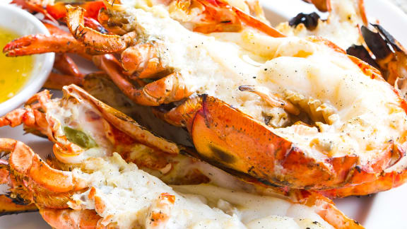 homard au beurre de corail